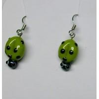 Berušky zelená